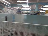 CNC prensa hidráulica EHT VARIOPRESS 85-25 2004-Foto 8